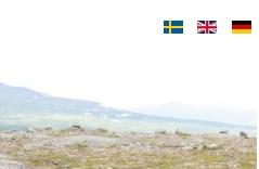 Logo Schwedisch Übersetzung